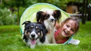 Петряєва Т.  Купити собаку  - єдина можливість купити любов за гроші