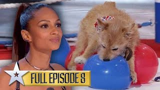Dog act BREAKS Guinness World Record | Britain's Got Talent | Series 9 | Episode 8 | FULL EPISODE