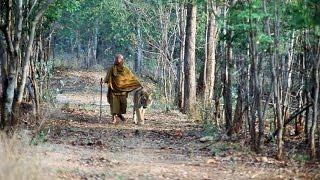 El Tigre y el Monje  Los Secretos de la Naturaleza