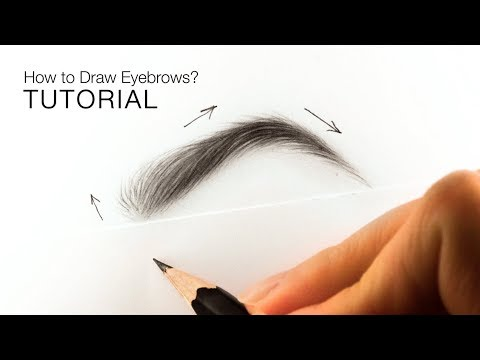 how-to-draw-realistic-eyebrows-for-beginners---easy-tutorial