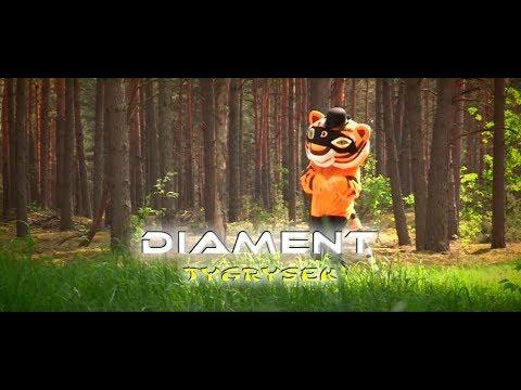Zespol Diament - Tygrysek  [Disco Polo 2018 ] (Official Video)