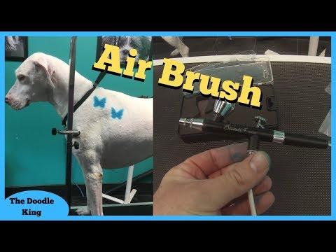 HOW TO AIRBRUSH STENCILS ON DOGS