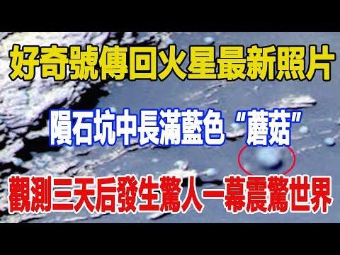 """好奇號傳回火星最新照片,隕石坑中長滿藍色""""蘑菇"""",觀測三天后發生驚人一幕震驚世界"""