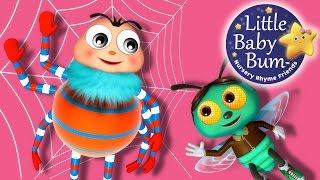 Itsy Bitsy Spider | Learn with Little Baby Bum | Nursery Rhymes for Babies | Songs for Kids