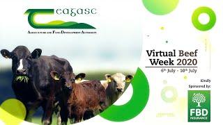 Teagasc: Virtual Beef Week Day 1