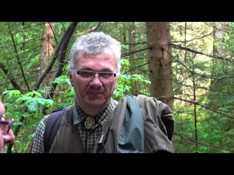 Lesnícký skanzen ČIERNY BALOG
