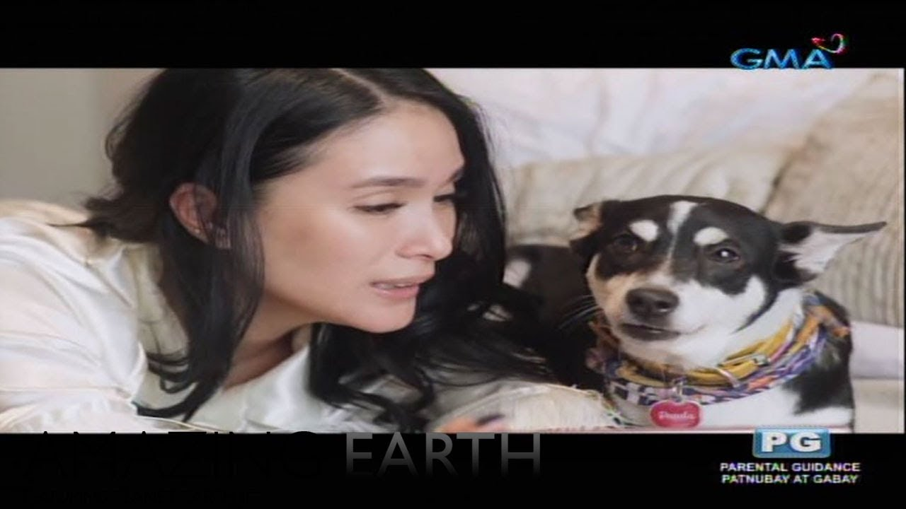 Amazing Earth: Heart Evangelista shares her love for Aspins