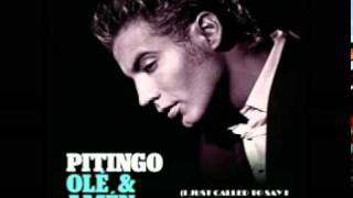 Pitingo-I just called to say i love you