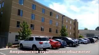 Как живут американские студенты (студенческое общежитие)