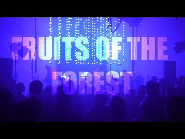 Megaboy - Fruits of the forest @H5_Regensburg