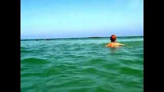 Тунис. Отличный пляж. #гидШадринАндрей