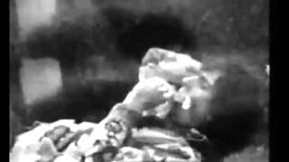 Syd Barrett - Effervescing Elephant [Video]