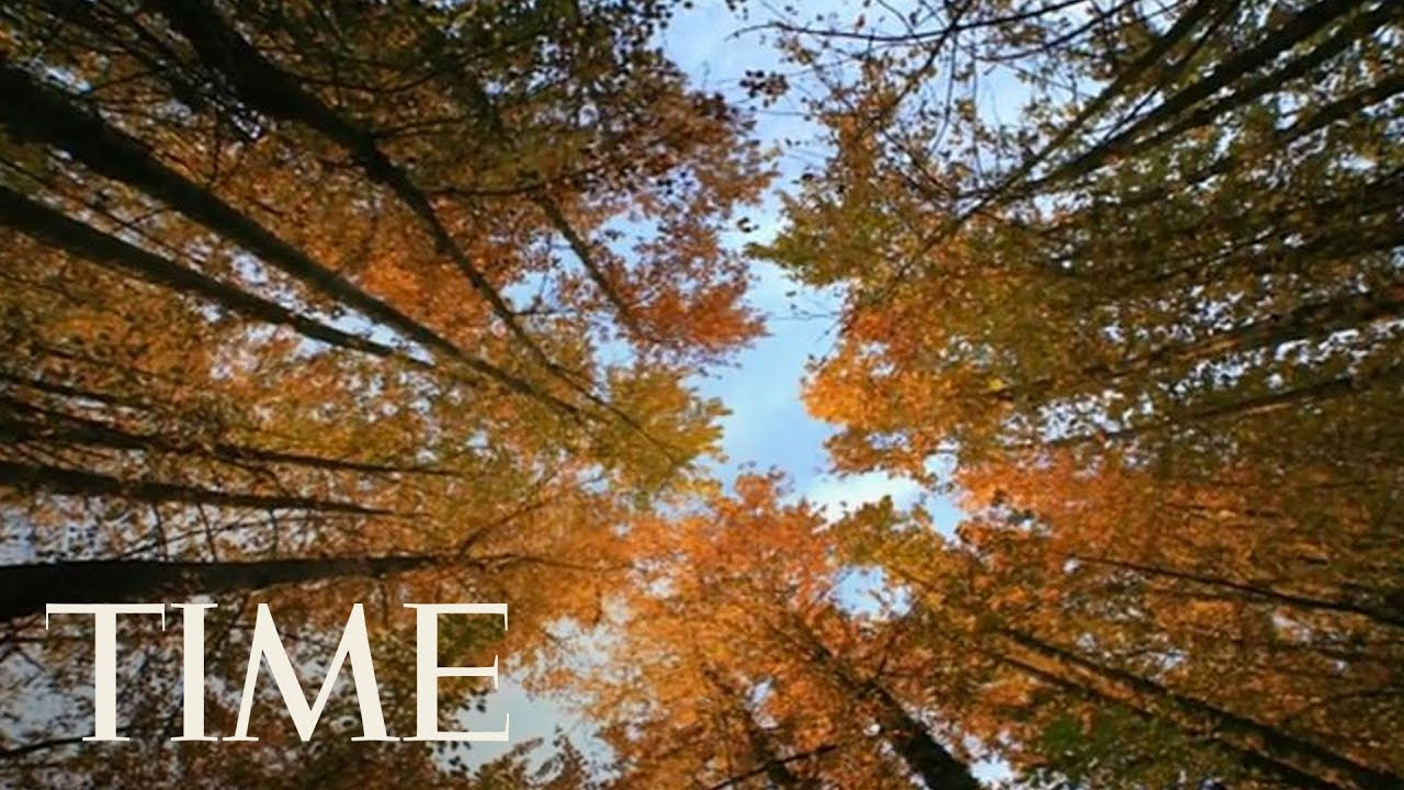autumn equinox 2017 why friday is the first day of fall in the