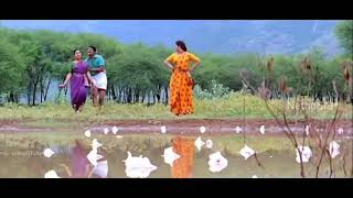 Tamil melody song whatsapp status || panju mittai selai katti song