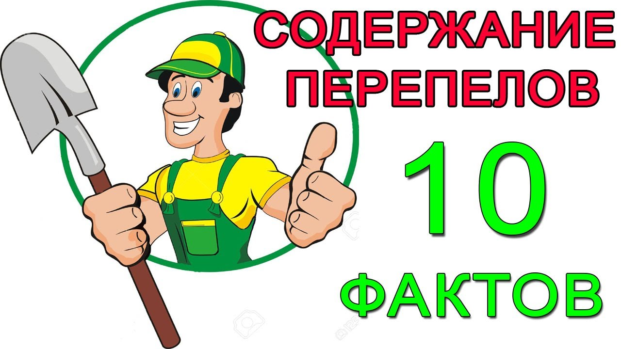 Отличные цены на холодильники и морозильные камеры в интернет магазине www. Mvideo. Ru и розничной сети магазинов м. Видео. Заказать товары по телефону 8 (800) 200-777-5.
