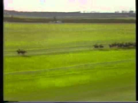 1984 Cesarewitch Handicap Newmarket Tom Sharpe