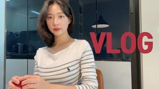 [vlog]이번주는 그냥 먹방 브이로그 할게요(쿡방과 …