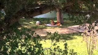 Repeat youtube video Sybil Enema Scene