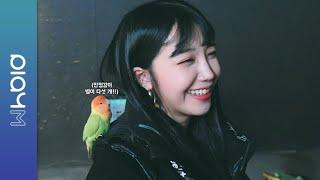 (SUB)Apink Mini Diary - 앵무새와 핑수니들