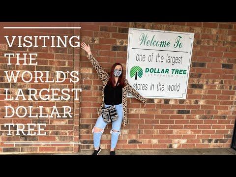 VISITING THE WORLD'S LARGEST DOLLAR TREE|DOLLAR TREE HAUL|AGILESLIFEFORME