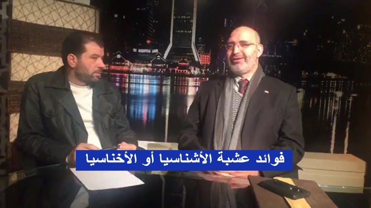 فوائد عشبة الأشناسيا أو الأخناسيا | الدكتور أمير صالح في ضيافة وهبه حسان