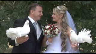 Свадьба в Липецке Виталия и Марины