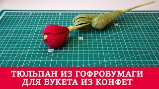 Тюльпан из гофробумаги / Букет из конфет
