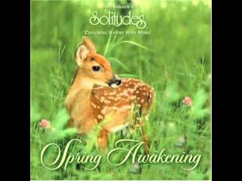Spring Awakening - Dan Gibson's Solitudes [Full Album]