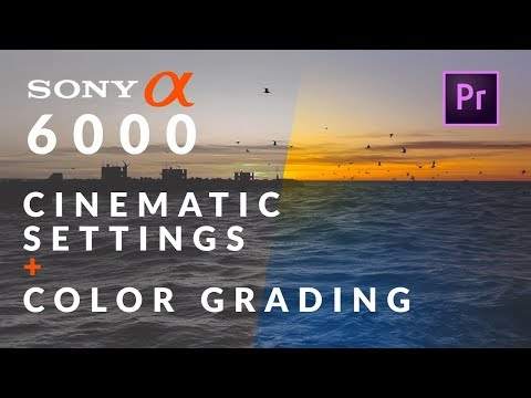Best CINEMATIC Settings for SONY A6000 + How To COLOR GRADE | Premiere Pro Tutorial
