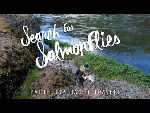 PLP Travels: Fly Fishing The Deschutes Salmonfly Hatch 2017