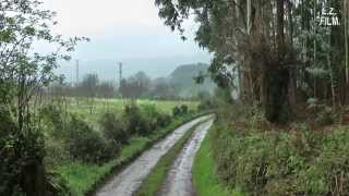 Camino de la Costa 2013 (7): Pendueles - Llanes - Nueva [- Covadonga] - Leces - Sebrayo