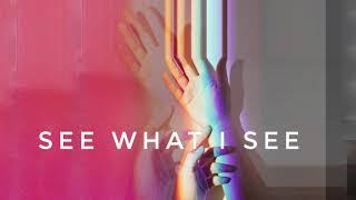 See What I See - This Boy Electric ft. Nova Nardi (AUDIO)