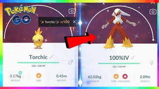 LIVE🔴 100IV SHINY TORCHIC HUNT! COMMUNITY DAY EVENT in Pokemon Go! 💚💯  Road to 17,000 Subs!