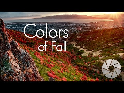 Photographing Fall Colors in the Mountains | Landscape Photography