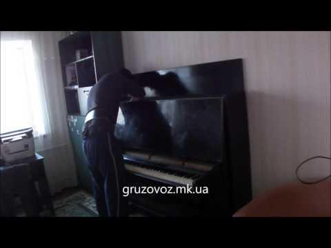Грузоперевозки Николаев, услуги грузчиков.