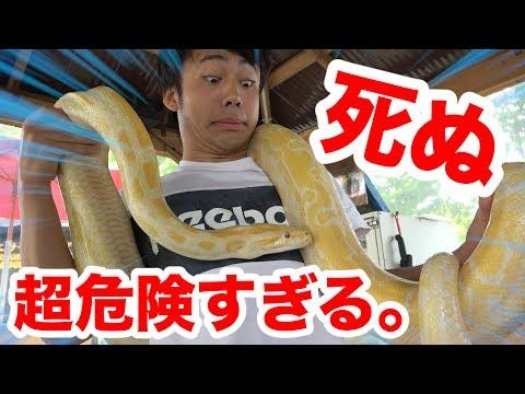 日本一!?死ぬほど危険すぎて誓約書を書く動物園が怖すぎる!!