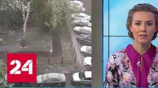 видео Погода в России