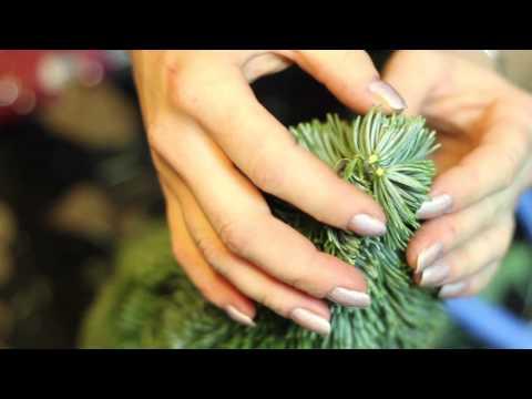 Подарок на Новый год своими руками: Ёлочка с сюрпризом!