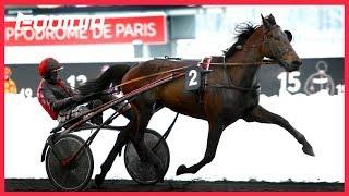 Vidéo de la course PMU PRIX DE L'ILLE-ET-VILAINE