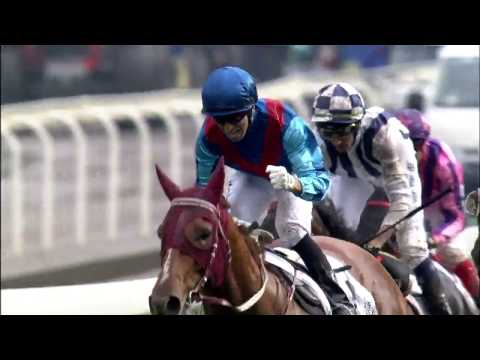 RAPPER DRAGON takes the BMW Hong Kong Derby 2017