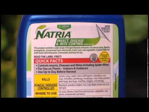 Bayer / Natria