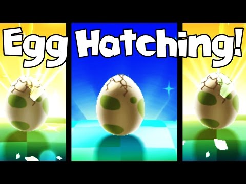 Pokemon Sun Egglocke - EGG HATCHING!