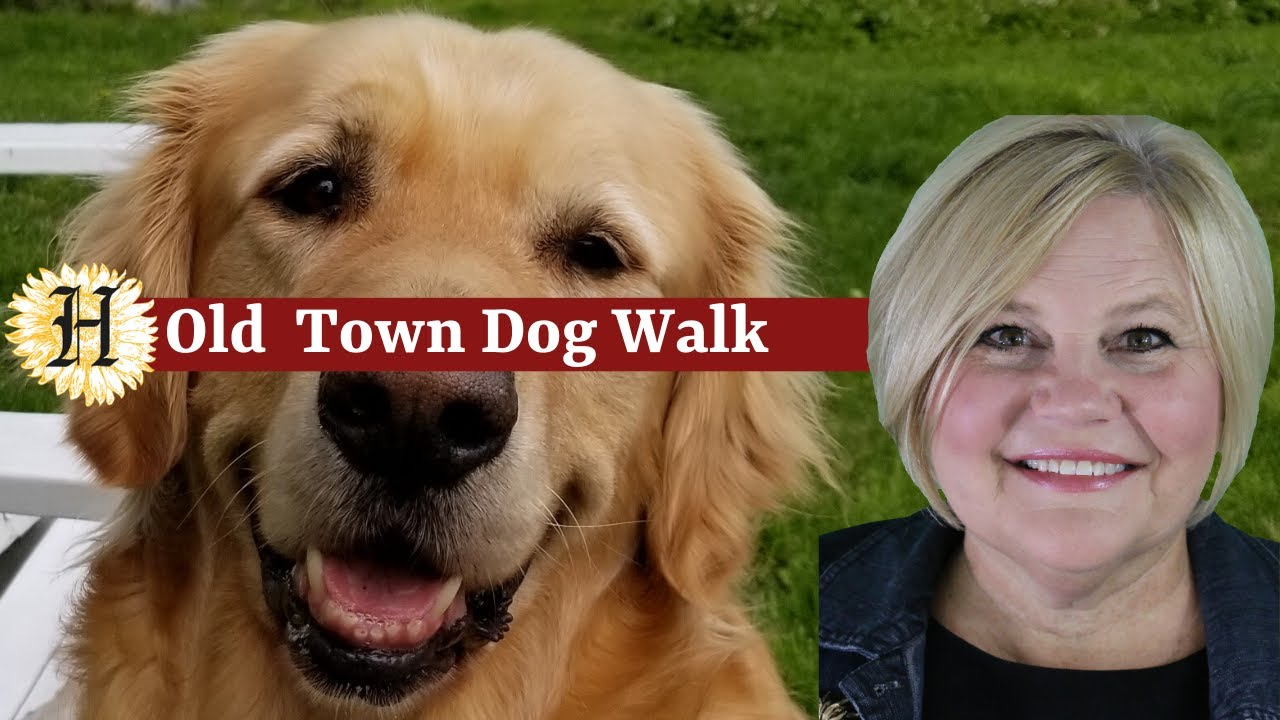 Dog Walks | Massachusetts| North Shore| Newbury | Old Town Hill (Greater Newburyport)