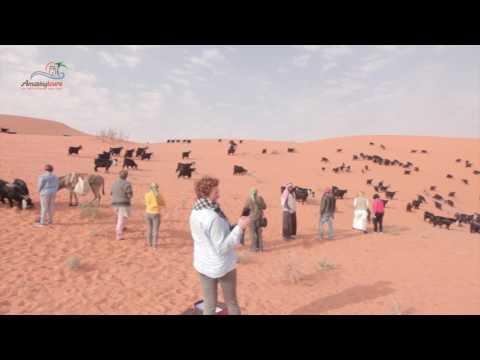 Arabian Life Experience