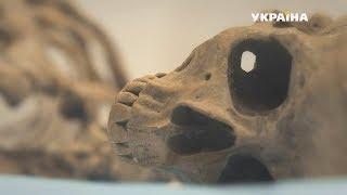 Анатомия убийства | Агенты справедливости | Сезон 5