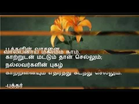 Buddha Quotes In Tamil Youtube