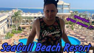 ДОСТОЙНАЯ ЧЕТВЕРКА SeaGull Beach Resort Hurghada 4 Сигал Хургада Египет 2020