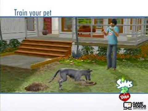 The Sims 2 Pets PSP training from YouTube · Duration:  6 minutes 24 seconds  · 35,000+ views · uploaded on 8/5/2011 · uploaded by swayek