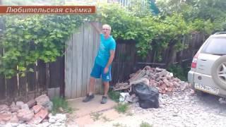 В Волжском дачник терроризирует соседей своей собакой