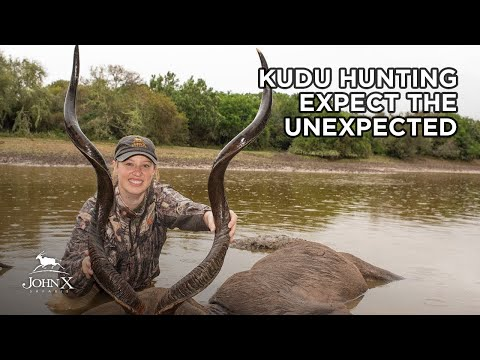 Kudu Hunting - Expect The Unexpected In Africa | John X Safaris